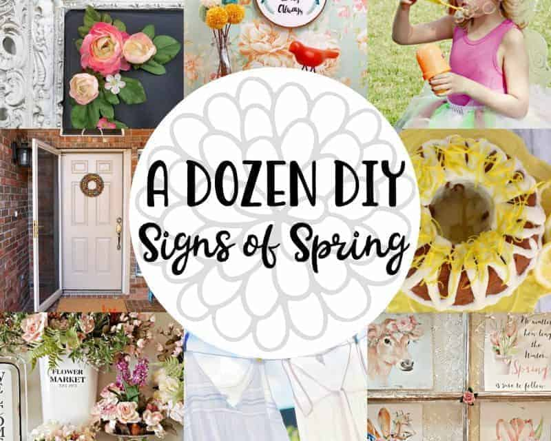 12 DIY Signs of Spring