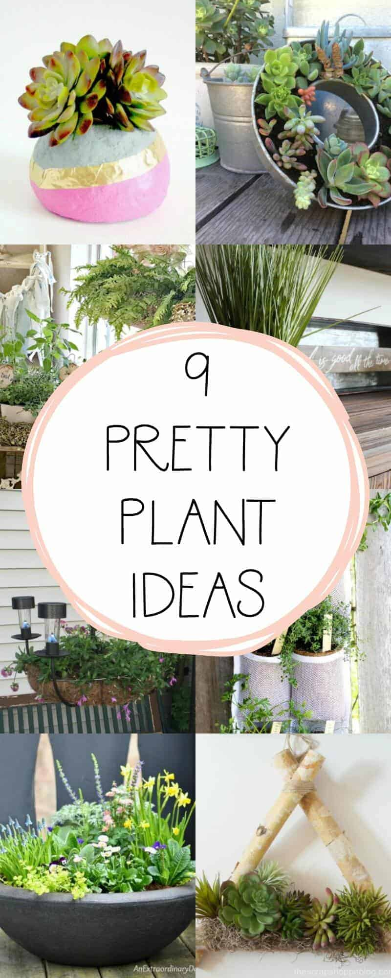 long collage with overlay of 9 creative and pretty plant ideas