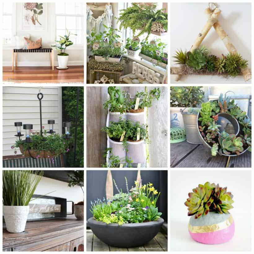 collage of 9 creative and pretty plant ideas