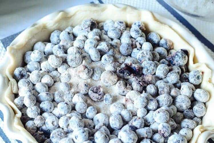Homemade blueberry pie filling in bottom pie crust
