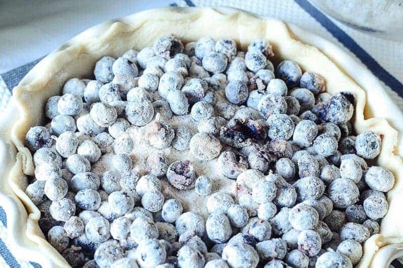 Homemade blueberry pie filling in bottom pie crust