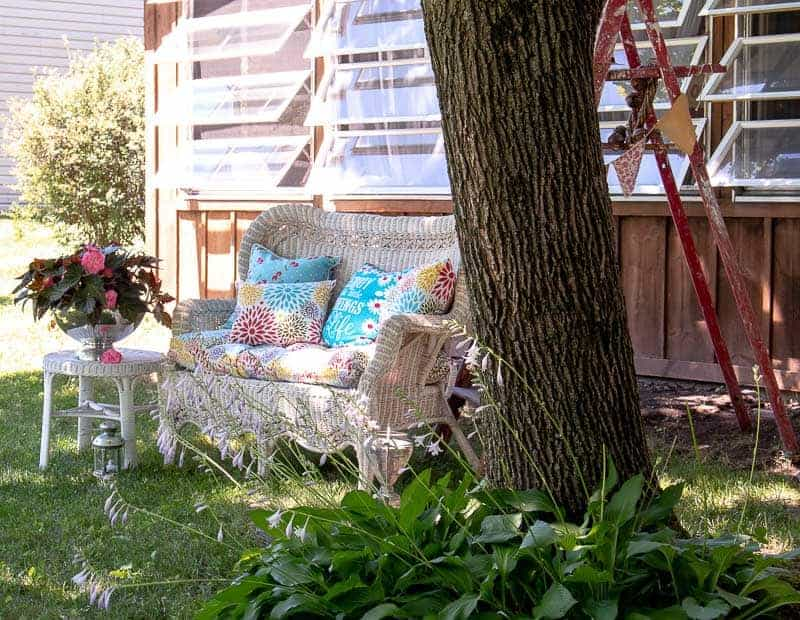 Wicker sofa with inexpensive cushions and large maple tree in back yard