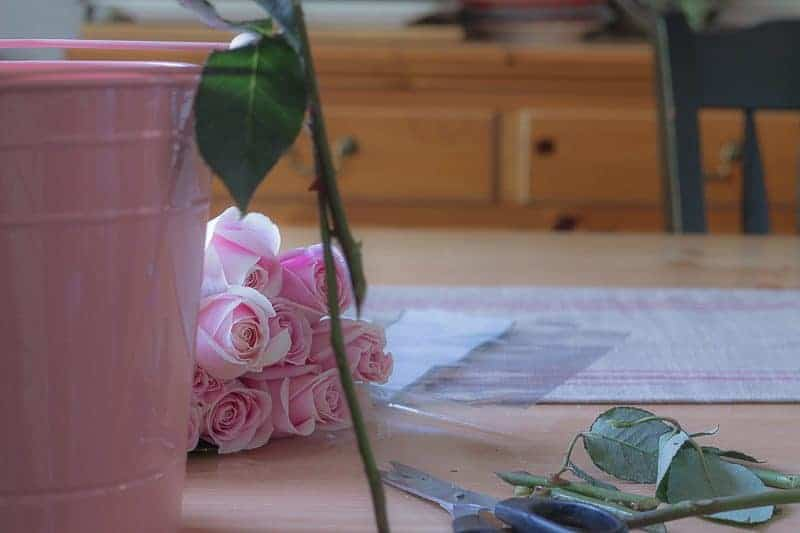 How to arrange flowers - Pink metal pain with pink roses behind it, scissors, and cut greens in the foreground