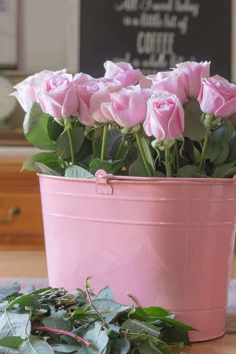 How to arrange flowers - Close up of pink roses arranged in a pink pail with green rose cuttings in front of bucket on dining room table
