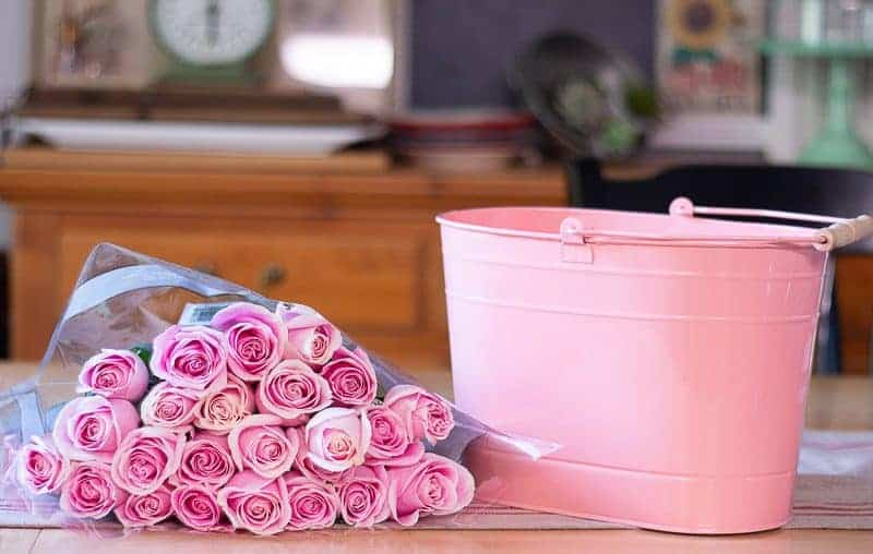 How to arrange flowers - Two dozen beautiful pink roses in wrapper lying on table next to pink metal bucket