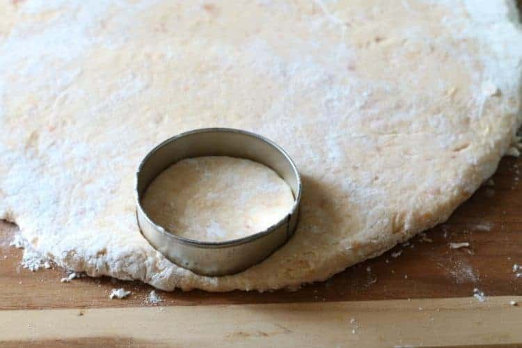 sweet potato biscuit dough rolled out with biscuit cutter