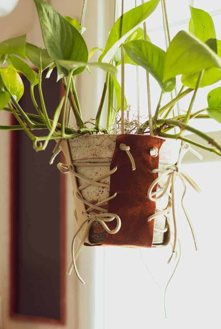 Easy DIY Leather Plant Hanger with Leather Laces and hanging plant