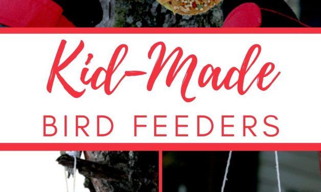 Homemade Bird Feeders for Kids to Make