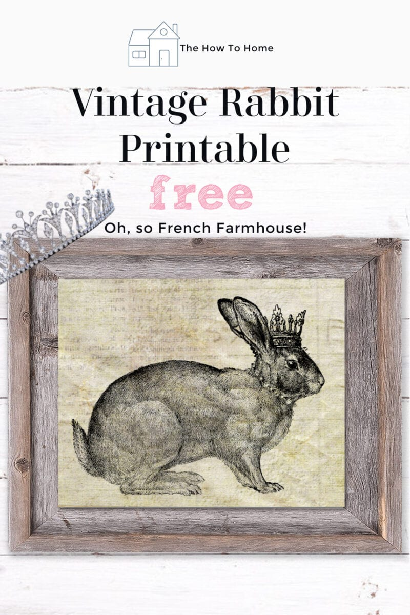 Image for Pinterest of a black ink bunny wearing a crown in a pallet wood frame