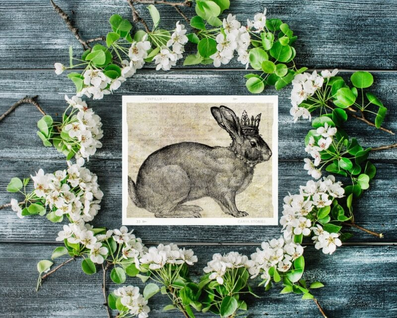 Antique printable of a vintage rabbit on a grey wood surface surrounded by a floral wreath