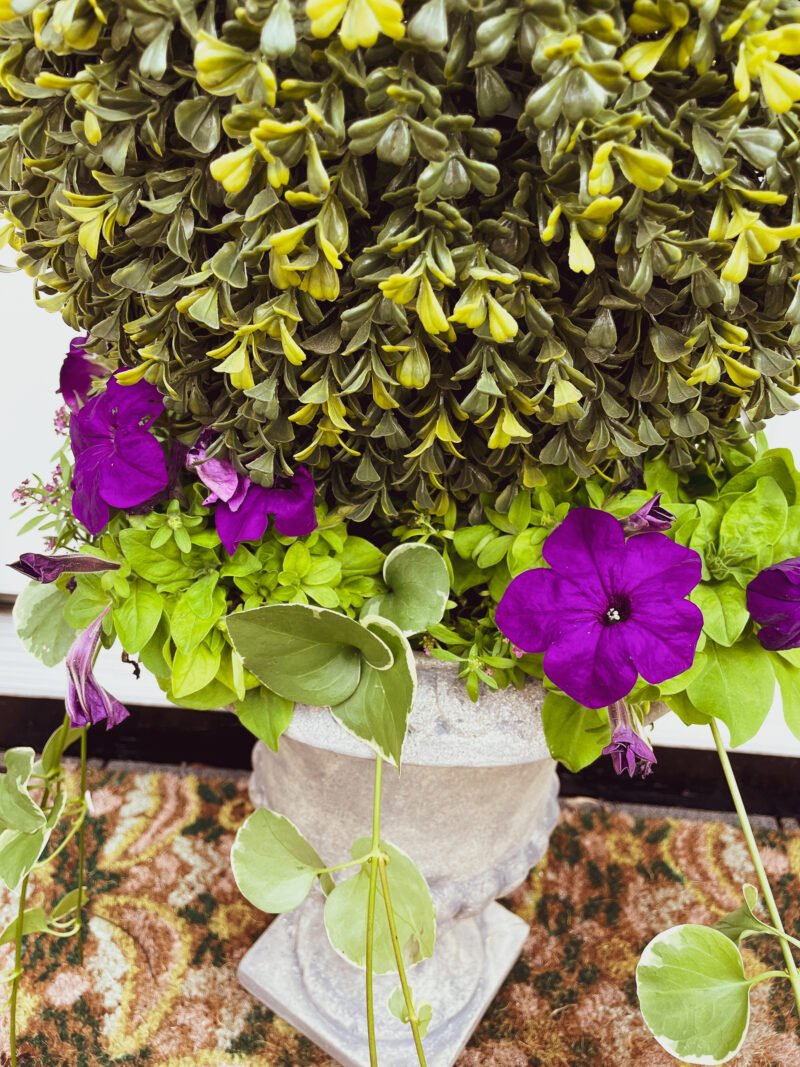 Upcycled Garden Planters - Balsam Hill Topiary Urn filled with gorgeous purple petunias