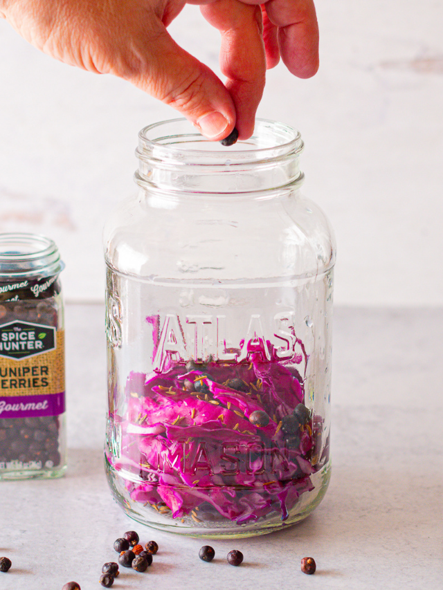Make Your Own Red Cabbage Sauerkraut At Home In a Jar Web Story
