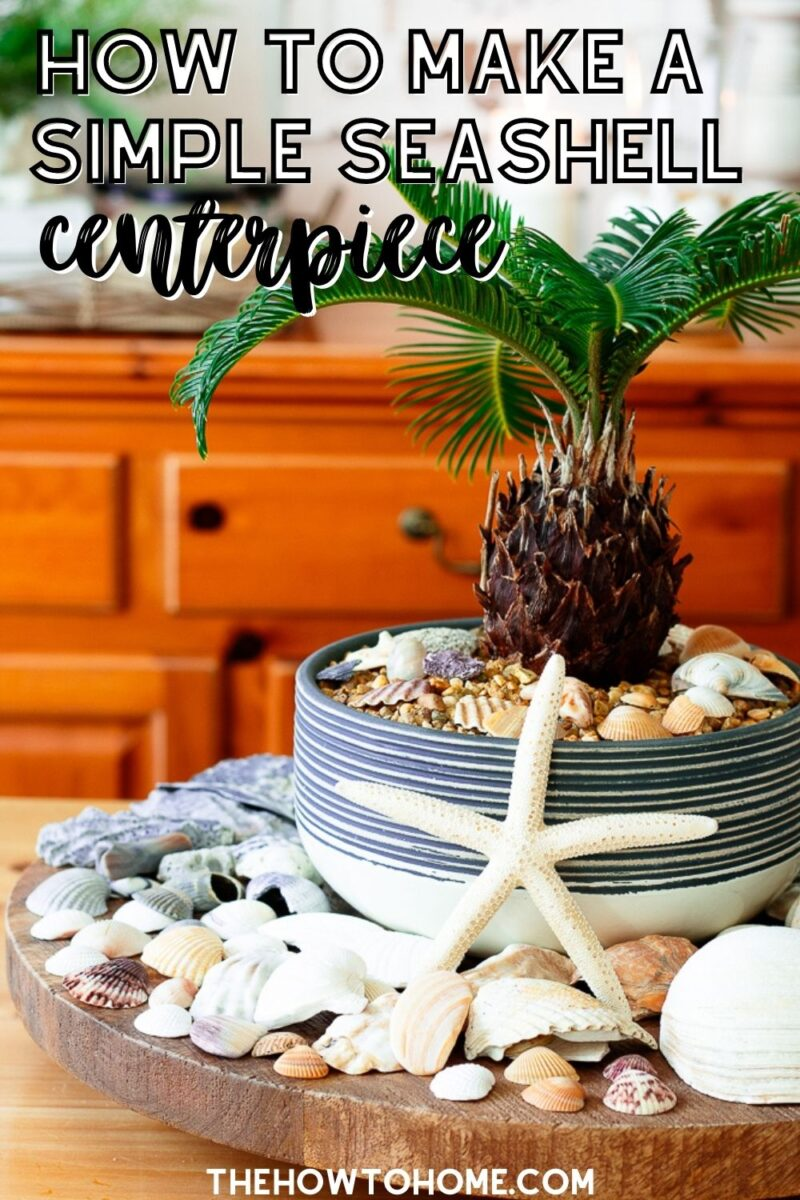 Lazy susan on table with baby palm tree in the center surrounded by beautiful seashells to create a simple seashell centerpiece